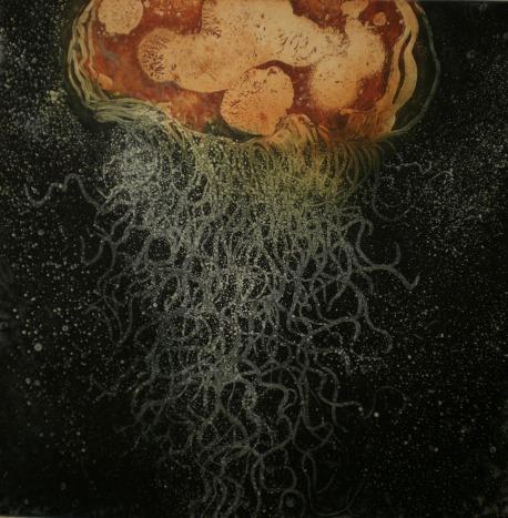 Medusozoa by Shubigi Rao