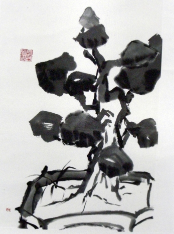 Silhouette along the Corridor Bonsai by Quek Kiat Sing