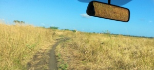 Driving to the interior - The trail to Ndera