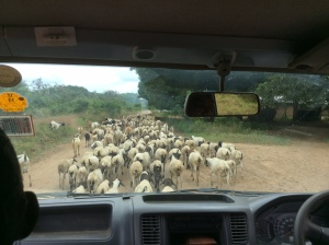 The Road to Ndera - Traffic Jam Delta Style